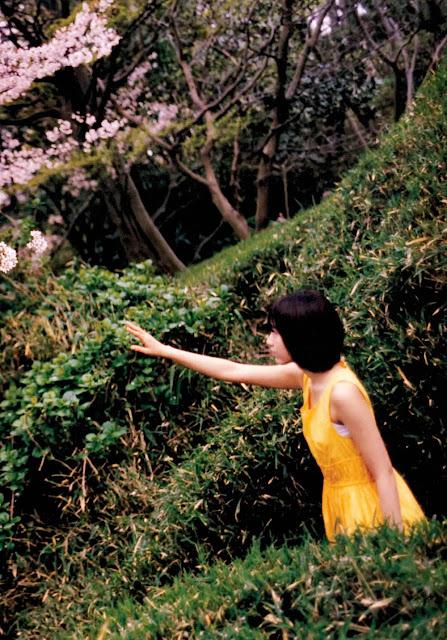 Sakura Miyawaki 宮脇咲良 Sakura さくら Photobook 写真集 02
