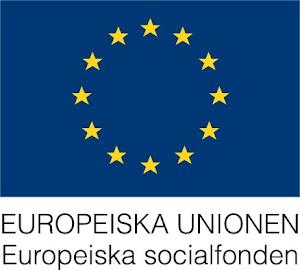 Ett ESF-projekt