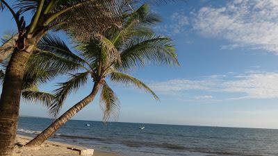 Муйне, Вьетнам, пляж, пальмы, песок