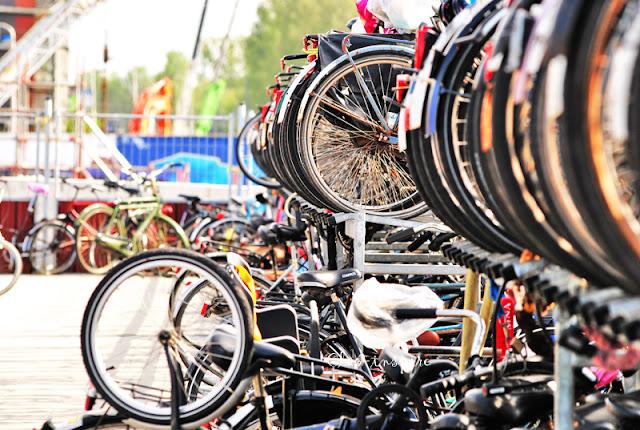 rowery na zdjęciu