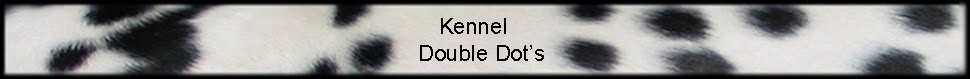 Kennel Double Dot's