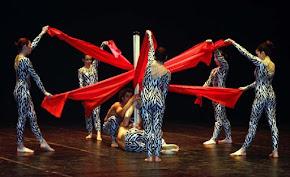 La danza : nobile arte , grande opportunità per i giovani ed oggi motivo di studio