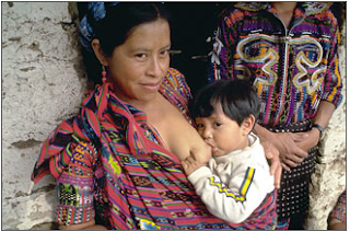 postpartum reocvery holistic pregnancy and birth blissful mama