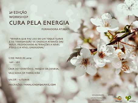 Workshop Cura pela Energia 2