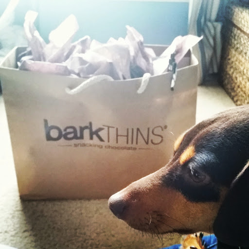 barkTHINS-Package-tasteasyougo.com