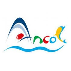 Logo PT Pembangunan Jaya Ancol