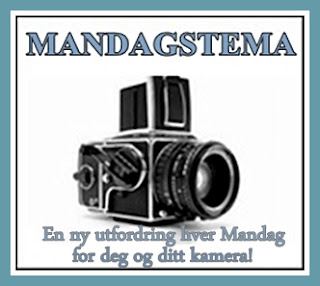 http://helenesblogadresseat.blogspot.no/2014/06/mandagstema-120.html