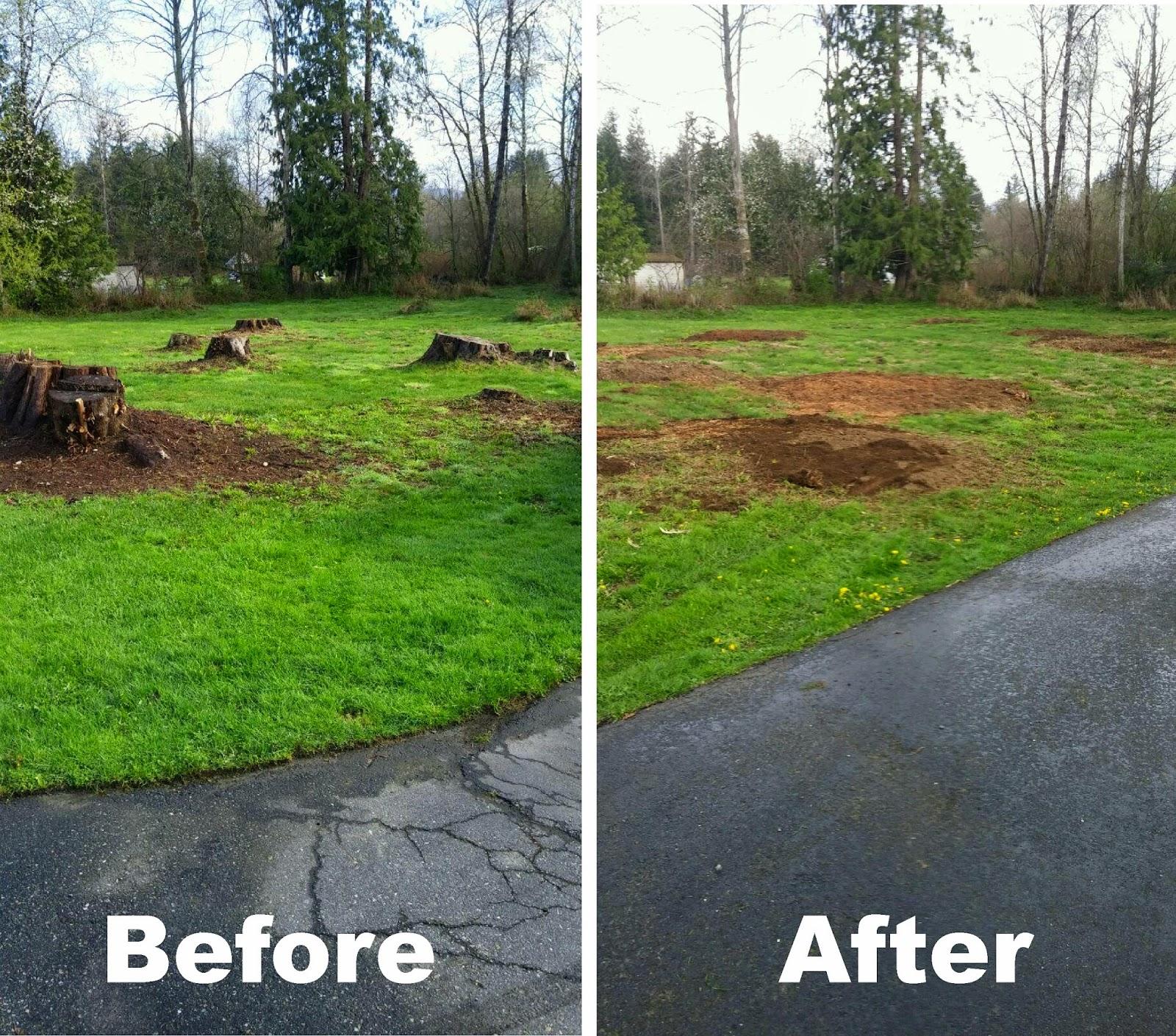Brads Stump and Tree Service