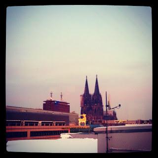 Kölner Dom mit Rentier in der Abendsonne