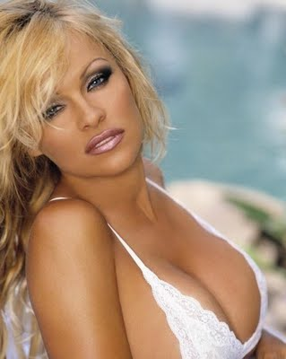 hollywood actress and model pamela anderson photos unseen