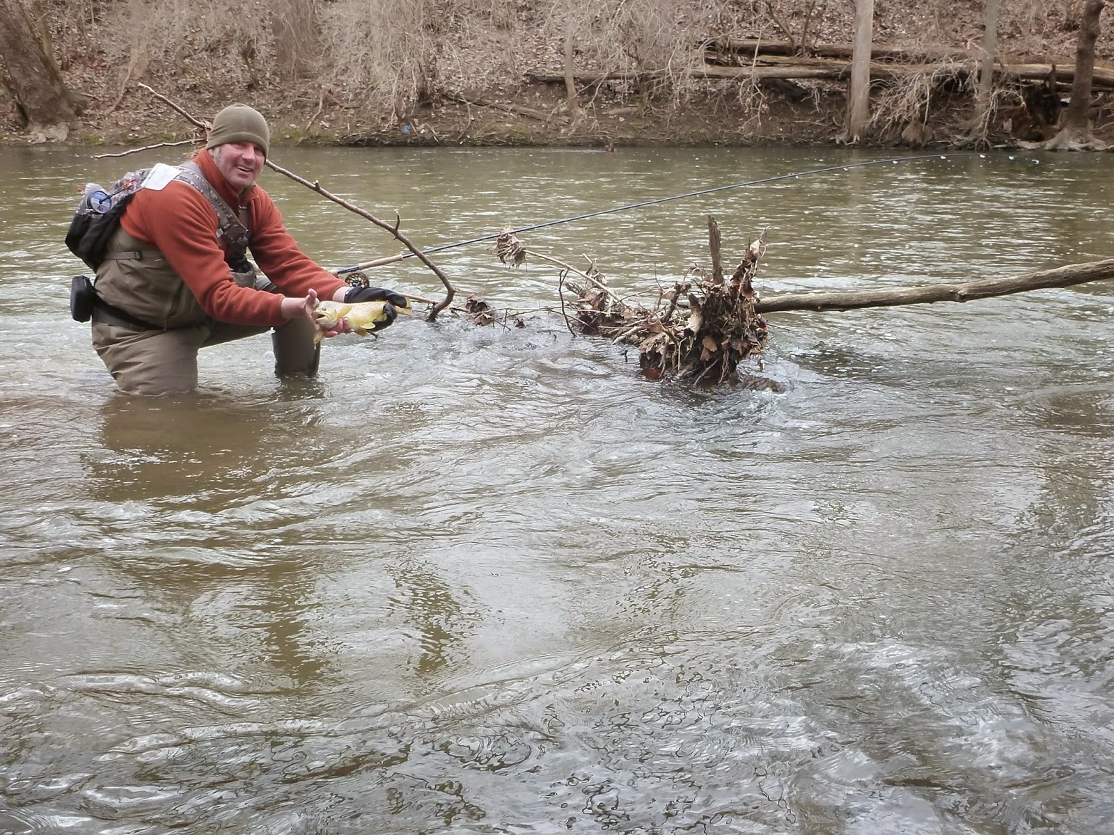 Ohio trophy trout hunter mad river march 27 2015 for Trout fishing in ohio