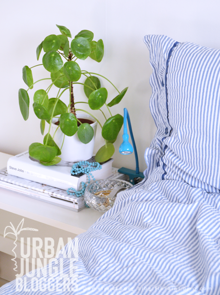#UrbanJungleBlogger: 1 Plant - 3 Stylings, urban jungle bloggers, pilea, styling with plants