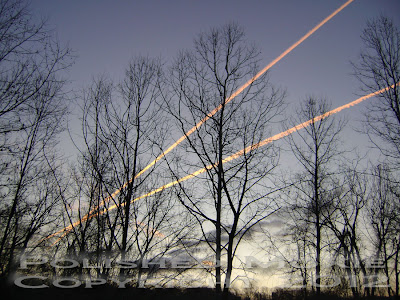 Jet trails in the early morning sky.