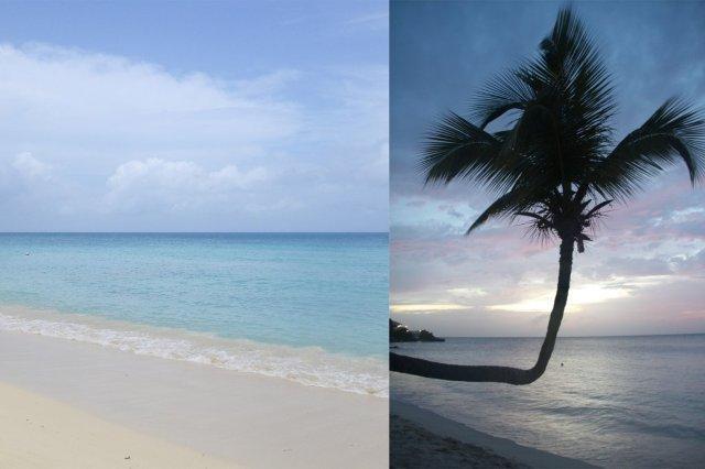 Playa y palmera al atardecer en Antigua
