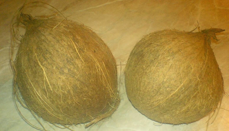 nuca, nuca de cocos, retete cu nuca de cocos, reteta cu nuca de cocos, preparate cu nuca de cocos, retete culinare, preparate culinare, cum alegem o nuca de cocos buna, cum cumparam o nuca de cocos sanatoasa, retete cocos, reteta cocos, nuci de cocos, nuci,