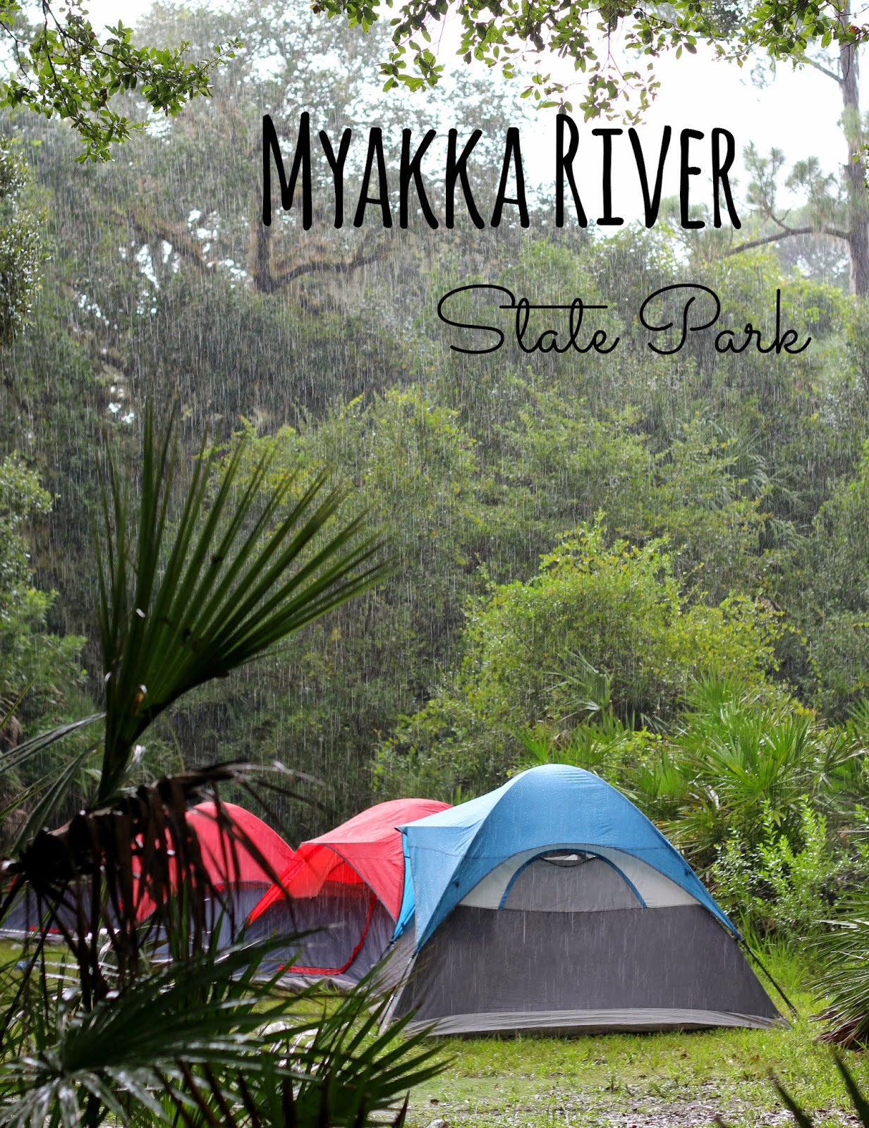 Family camping and exploring at Myakka River State Park, Florida