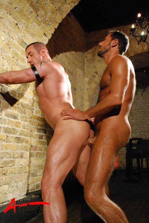 Jason Torres Gay Porn