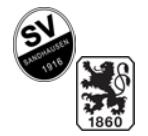 SV Sandhausen - 1860 München