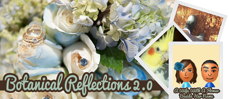 Botanical Reflections 2.0