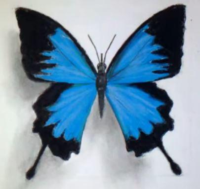 Le blog de marie soleil comment d ssiner - Dessiner un papillon ...