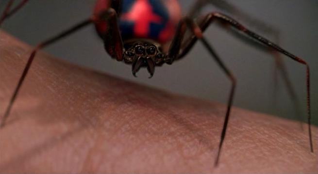 impulsegamer.com - Not all spider bites are AMAZING! - impulsegamer ...