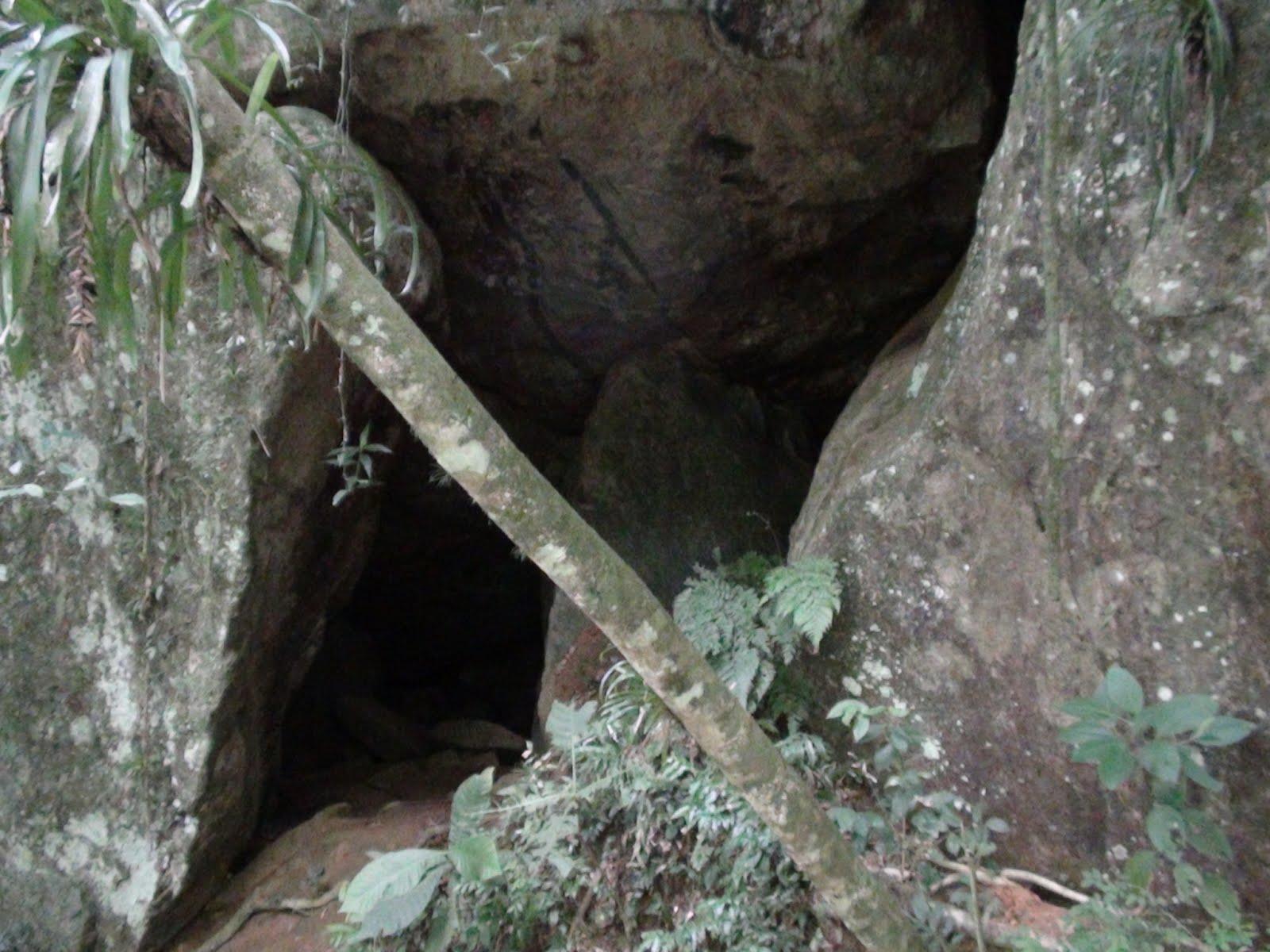 pedras jardim jaragua do sul ? Doitri.com