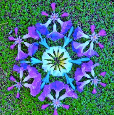 Sacred flower danmala art by contemporary artist Kathy Klein