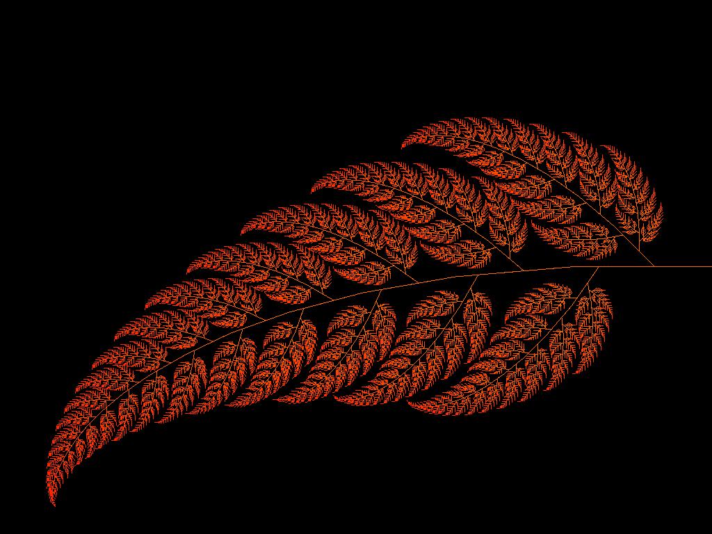 fern+fractal.png