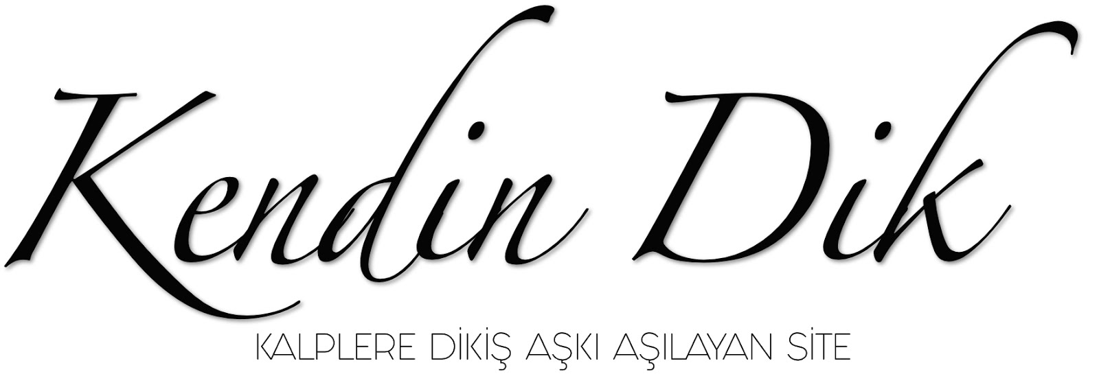KENDİN DİK...