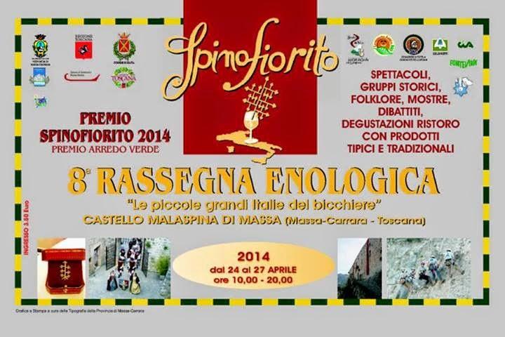 SpinoFiorito 2014: Cartolina Ufficiale