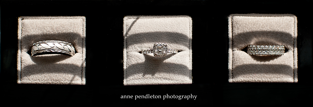 Anne Pendleton Photography Mr And Mrs Darrell Stuckey