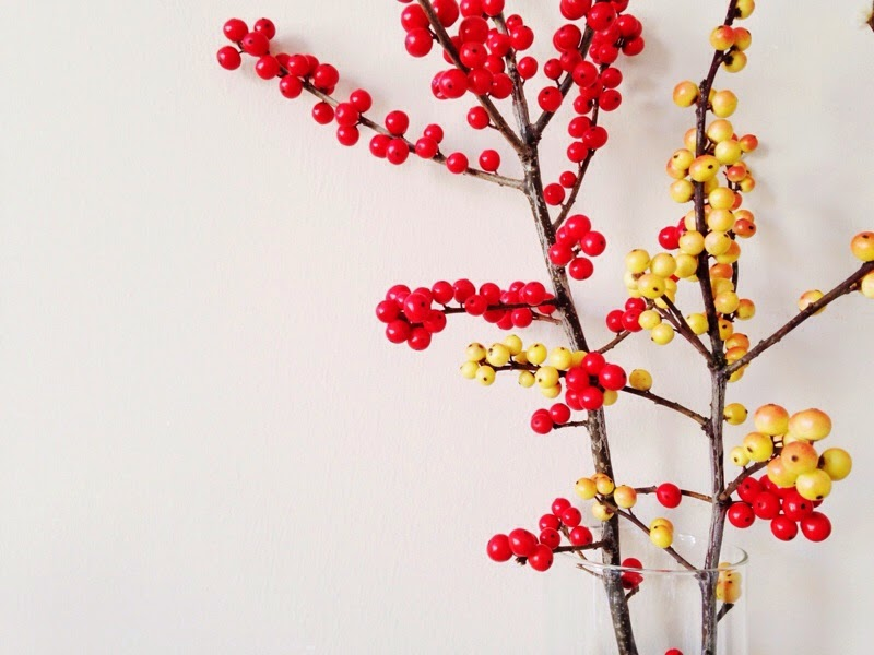 Beautiful red and yellow holly berries