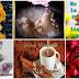 FELIZ VIERNES - Fabulosas tarjetas y postales animadas  con mensajes y frases de aliento y esperanza