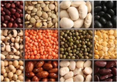 Alimentos ricos en magnesio total fitness tijuana - En que alimentos encontramos magnesio ...