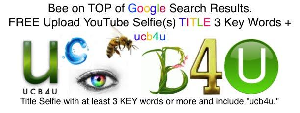 UCB4U