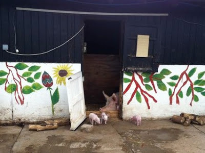 pig and piglets at Surrey Docks Farm