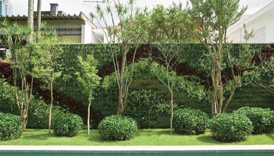 jardim vertical xaxim:Architetando Verde: Como fazer um jardim vertical