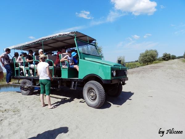 safari-in-delta-dunarii-letea