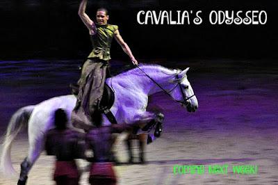 Cavalia's Odysseo