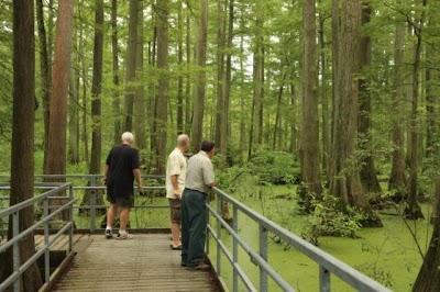 'Wetland Warriors' help repair flooded Illinois boardwalk