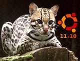 Download Ubuntu 11.10 Oneiric Ocelot
