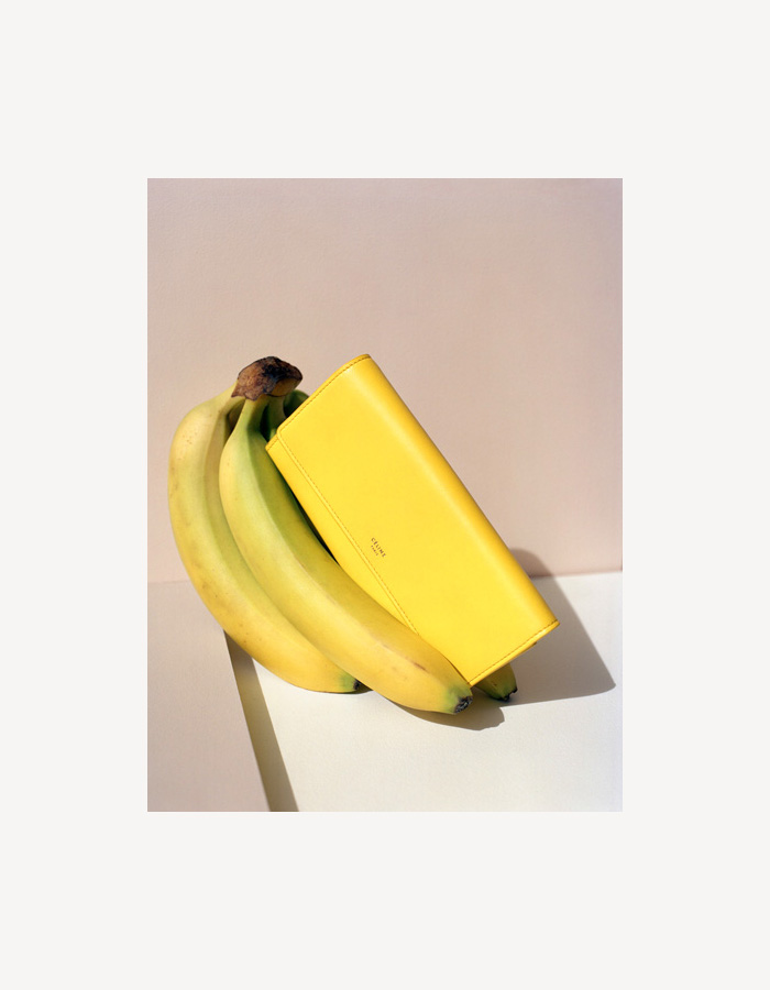 Banana Yellow Celine Wallet | Allegory of Vanity
