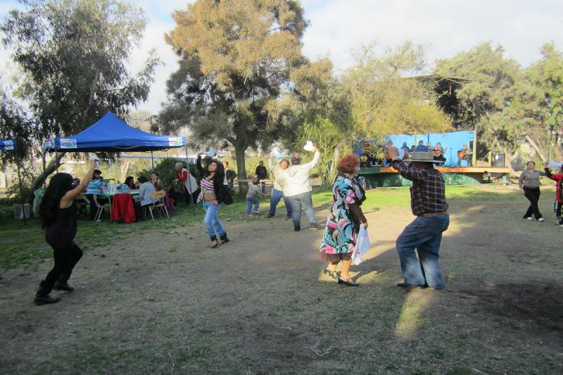 Municipalidad de antofagasta informa con xito se realiz for Viveros en maipu