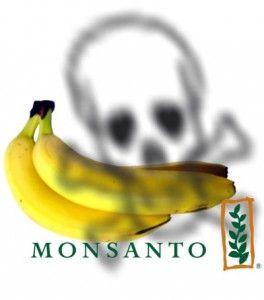 http://1.bp.blogspot.com/-PyHLxVg9uAk/Tl4j9daT2pI/AAAAAAAAEGA/0Ci4m9qjqOQ/s1600/banane.jpg