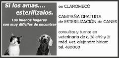 campaña 2013 de esterilización de canes