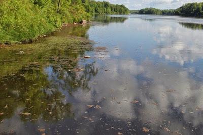 water quality needs improvement