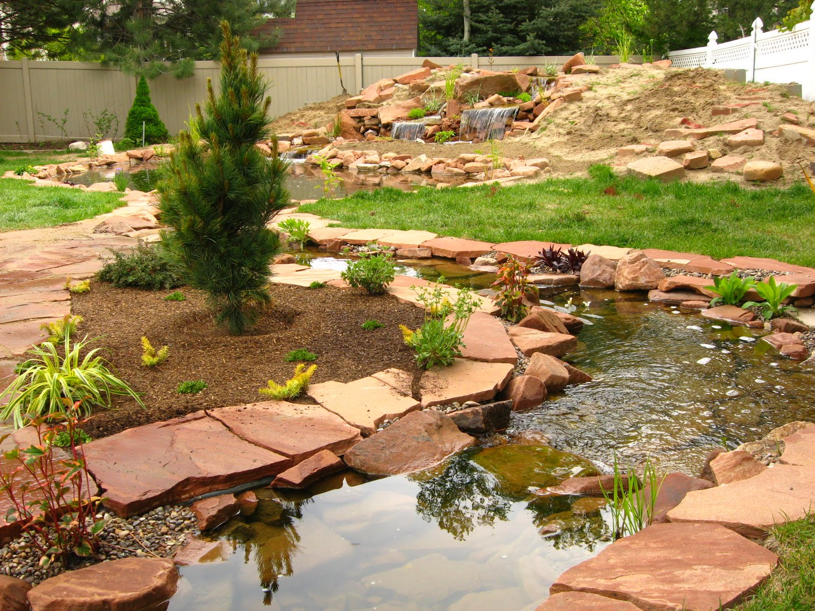 Bon The Trout Pond And Stream Complete But Looking A Bit Naked. Accent Trees  And Shrubs Are Needed Along Side Companion Perennials And Some Hardscaping  Stone ...