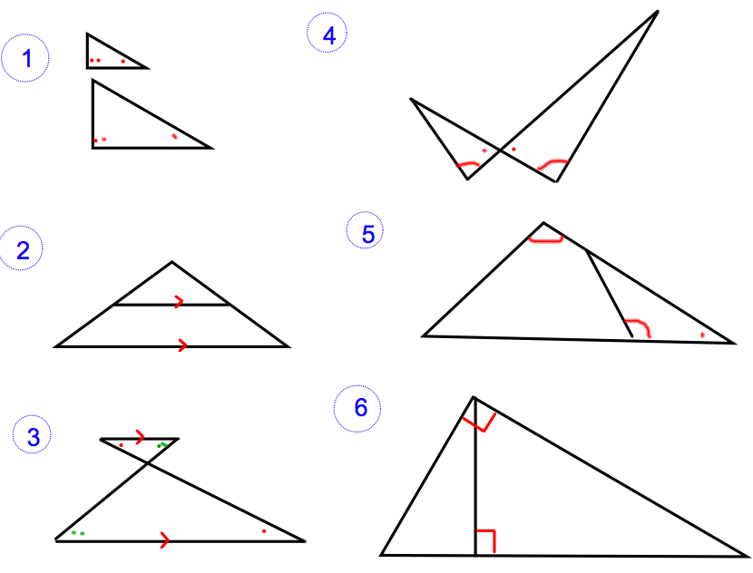 Similarity and Proportion – Similar Triangles Proportions Worksheet