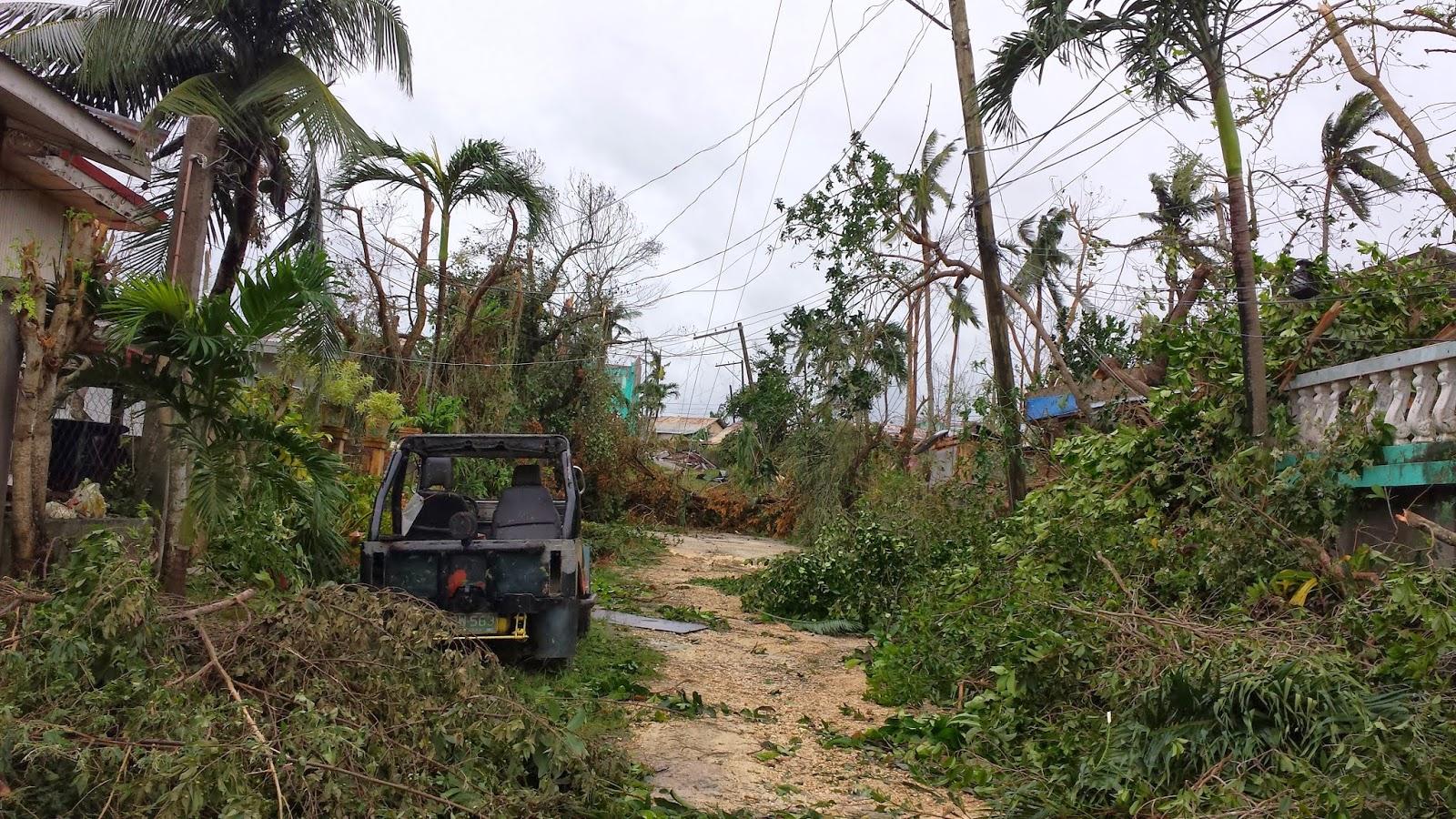 City of Bogo City of Bogo After Typhoon Yolanda Haiyan : 20131108164315 from www.cityofbogo.com size 1600 x 900 jpeg 593kB