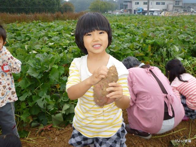 Người Nhật để con cái tự do ước mơ